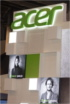 Acer: The lack of a clear trait of individualism