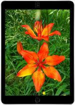 Apple iPad 9.7 WiFi 128 GB