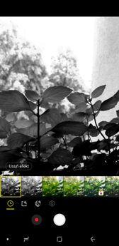 Interfejs aparatu | Live Focus | Ustawienia