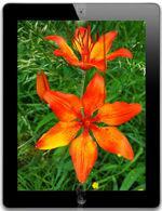 Galeria zdjęć telefonu Apple iPad 4 16 GB