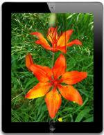 Galeria zdjęć telefonu Apple iPad 4 32 GB