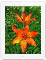 Galeria zdjęć telefonu Apple iPad 4 Wi-Fi 128 GB