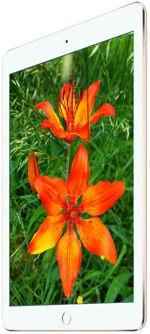 Galeria zdjęć telefonu Apple iPad Air 2