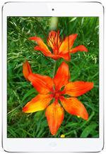 Galeria zdjęć telefonu Apple iPad mini 16 GB