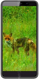 Galeria zdjęć telefonu Black Fox B6