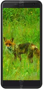 Galeria zdjęć telefonu Black Fox B7 Fox+