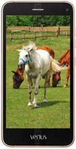 Galeria zdjęć telefonu Vestel Venus V3 5070