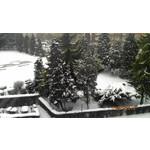 Zdjęcia użytkowników Acer CloudMobile