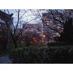 Zdjęcia użytkowników LG V30