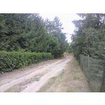 Zdjęcia użytkowników MaxCom MK241 4G