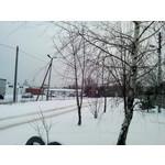 Zdjęcia użytkowników myPhone S-line
