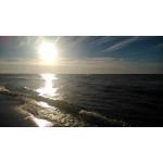 Zdjęcia użytkowników Sony Xperia L